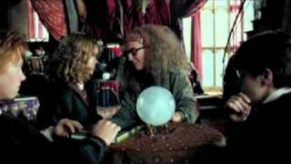 Hermione and Prof Trelawney
