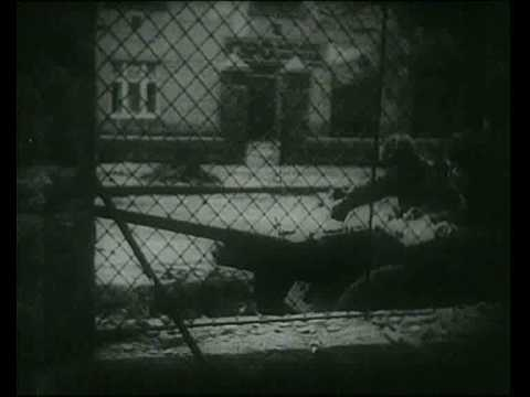 WW2 urban combat footage