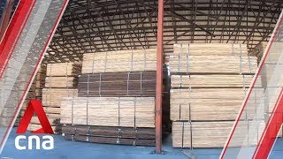 US exports of hardwood to China plummet amid trade war