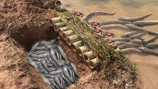 How To Make Simple Trap By Hand With Deep Hole And Bambo - Catch Fish And Crab In Simple Trap