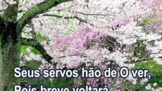 Vídeo 261 de Harpa Cristã
