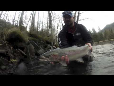 Winter Steelhead Fishing - Leaky Waders Fishing