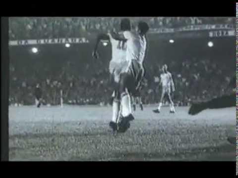 Pele - Top 20 Goals Video