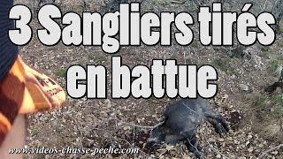 3 Sangliers Tirés En Battue - Drift HD Ghost