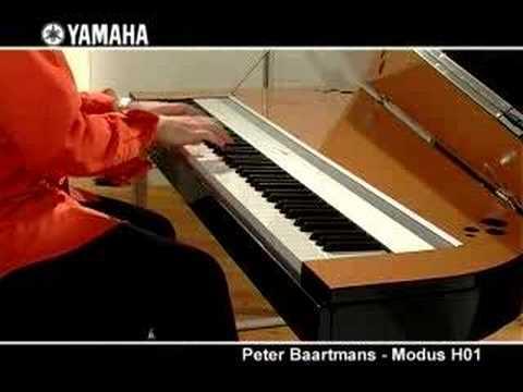 Peter Baartmans and the Yamaha Modus H01