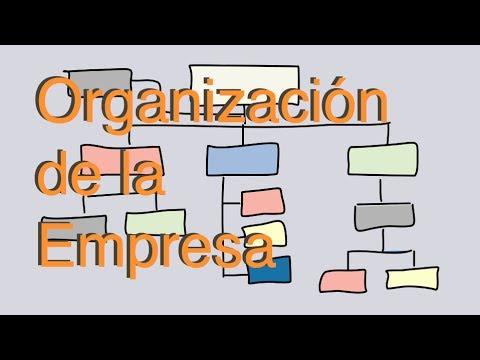 Diseño de la organización de la empresa