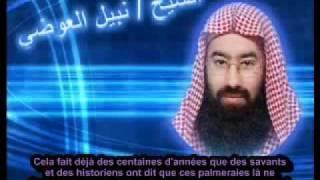Nabil Al-'Awadi : Le Chrétien qui a vu l'Antéchrist (Dajjal), Tamim Ad-Dari !