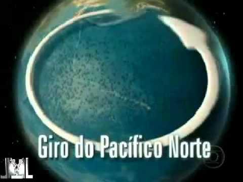 Lixo do Oceano Pacífico pode virar Ilha