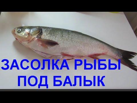 Как из толстолоба сделать красную рыбу