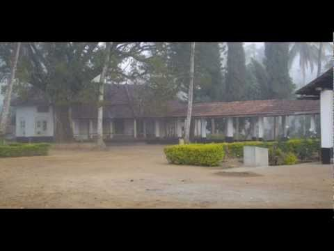 India Karnataka Virajpet Green Hills Estate India Hotels Travel Ecotourism Travel To Care
