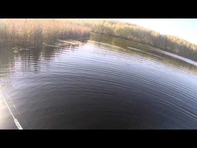 прогноз рыбалки моздок
