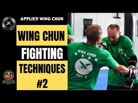 Wing Chun Fighting Techniques II Image 1