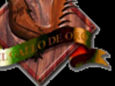 gallo de oro elizalde: