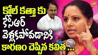 MP Kavitha Reveals Reason Behind KCR Not Attending Mamata Banerjee Kolkata Rally
