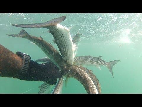 Подводная охота Черное Море 29.03.2014
