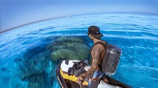 YBS Lifestyle Ep 3 - CLEAREST WATER EVER | Big Tiger Shark + Hammerhead Shark | Cod Catch And Cook