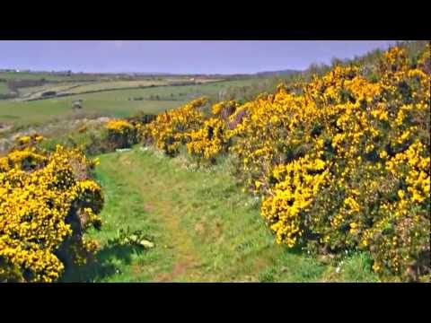 Walking Meditation -  Portwrinkle to Downderry (Coast Path) with North American Indian Flute (HD)