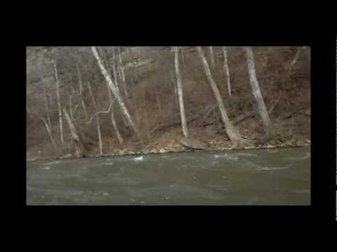 Elkhorn creek 12.19.12. at 1100cfs