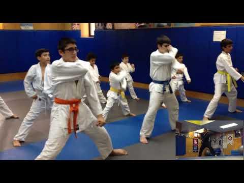 Shotokan Karate Training video