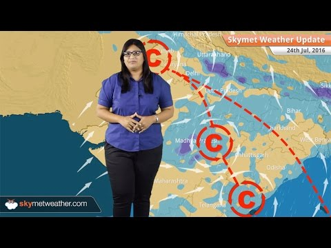 Weather Forecast for July 24: Monsoon rains in MP, Delhi, Punjab, Kerala, Karnataka