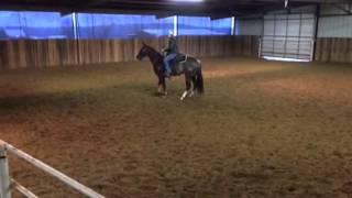 Elf- Jared Lesh cowhorses