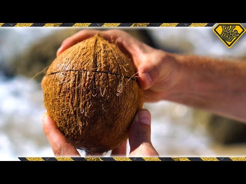If you're not a coconut cracking ninja from Samoa, then you'll need an easier way to bust coconuts for pleasure, or for survival. This is the easiest and most effective way I've found to do...