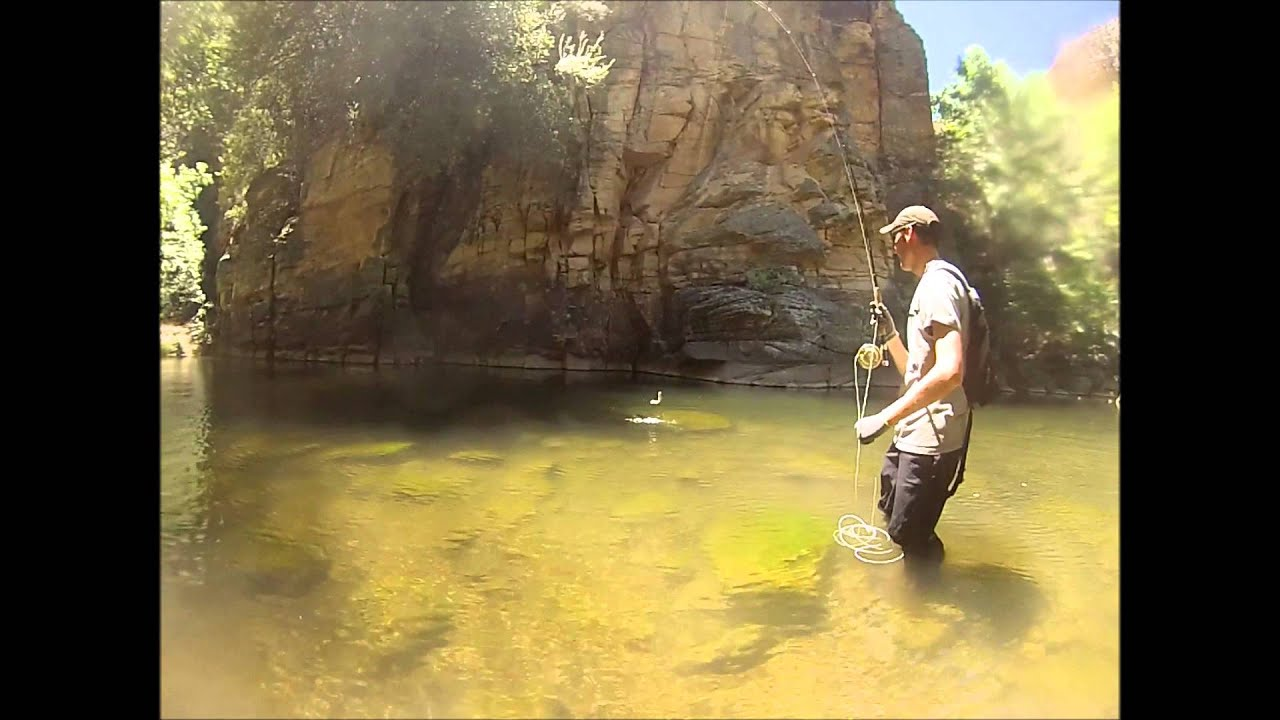 Fishing in west clear creek summer 2013 azpf youtube for Clear creek fishing report