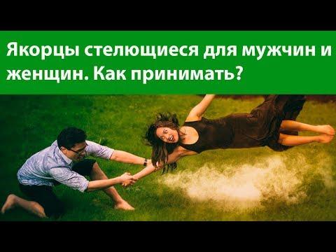 видео интимных отношений женщин и мужчин-хр2