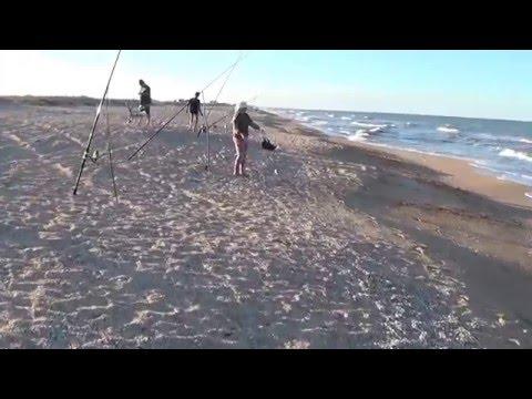 рыбалка на азовском море с берега пеленгас