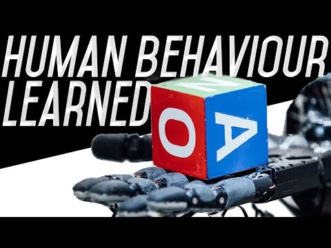 Robot Hand Unexpectedly Learns Human Behaviour! - Open AI