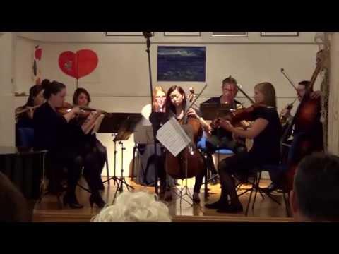 Papandopulijana Tribunj - Komorna simfonija (B. Papandopulo) - Students of the HMT Rostock