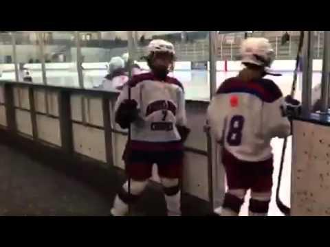 Лучшие приколы про хоккей (2015года)