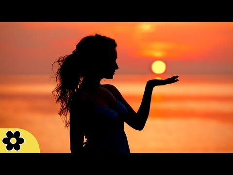 8 Hour Delta Waves Sleep Music: Nature Sounds, Relaxing Music, Calming Music, Soft Music ✿429C