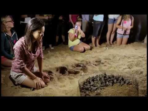 EarthHour 2014 Documentary
