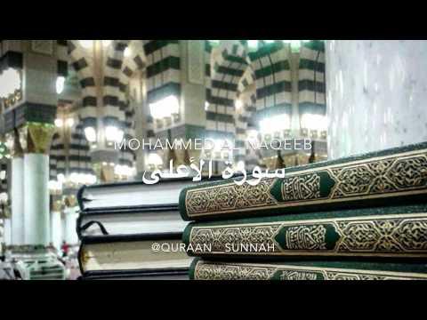 Mohammed Al Naqeeb - Surah Al-'Ala (The Most High)
