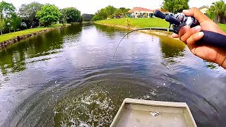 How Many Fish Can You Catch On 1 Senko!?
