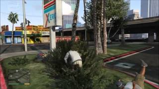 GTA 5 Cheats -- Spawn BMX (XBOX 360 & PS3)