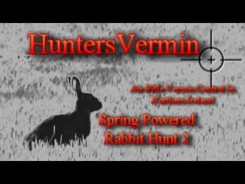 Air Rifle Hunting. Spring Powered Rabbit Hunt 2. 2014