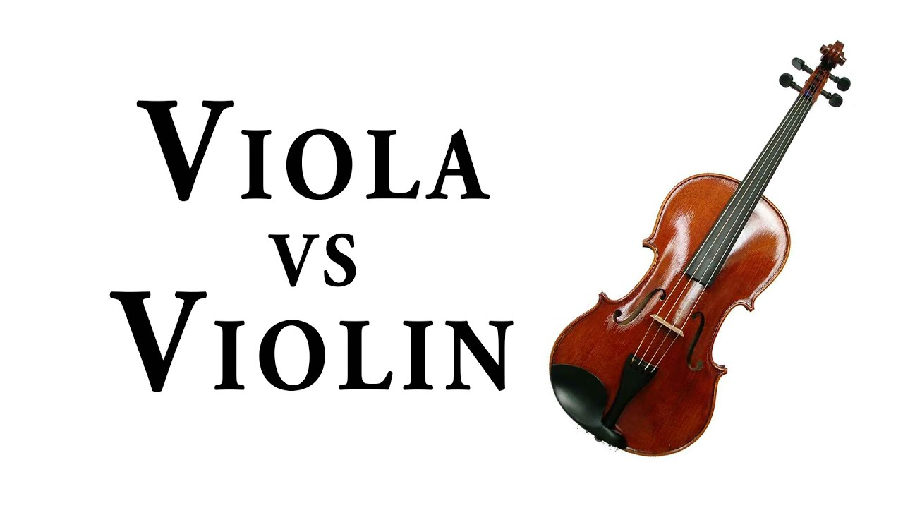 V Is For Violin VIOLA vs  VIOLIN