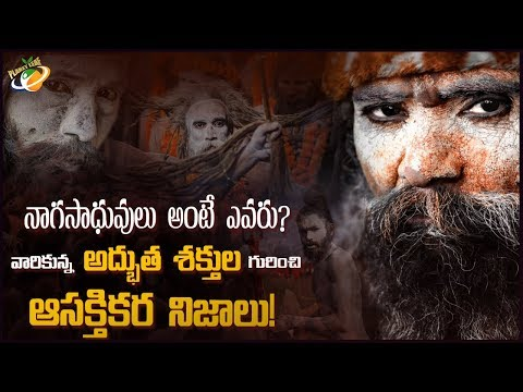 Interesting And Unknown Facts Of Naga Sadhu | Planet Leaf