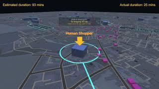 human shopper