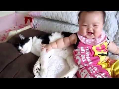 Bebe Cuida Al Gato! SUPER TIERNO! ★ Gatos Locos Humor Divertidos Chistosos risa Animales Chistosos