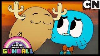 O Fim | O Incrível Mundo de Gumball | Cartoon Network