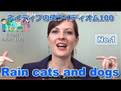 idiom 1/100 - Rain cats and dogs