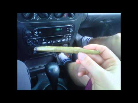 Palma - Fast Life video