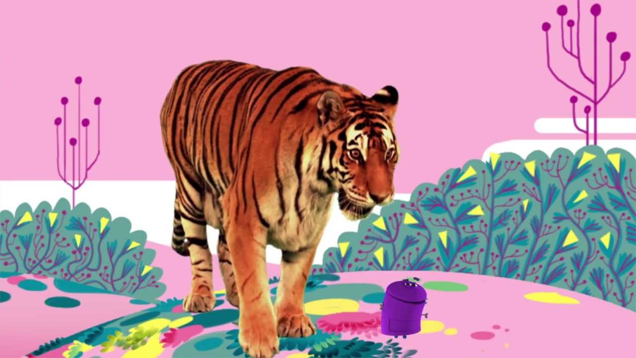 """Animal Songs: """"Tiger in the Jungle,"""" by StoryBots - YouTube"""
