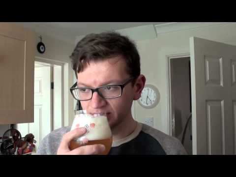 Bear Beer Reviews 63- Huyghe Brewery Delirium Tremens