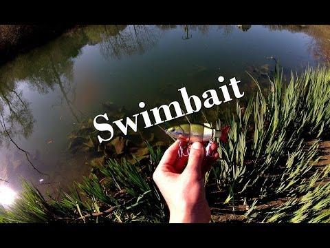 Nage de leurres - Swimbait - Présentation et Animation - GoPro HD