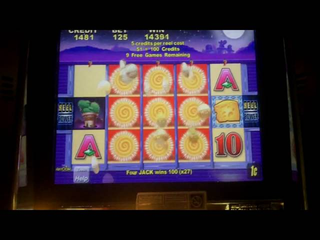 Aristocrat Technologies - Cactus Corral Slot Bonus BIG WIN