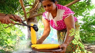 Sri Lanka Village Food - JACKFRUIT CURRY in Sigirya! Eating SRI LANKAN Food in a Tree House!!